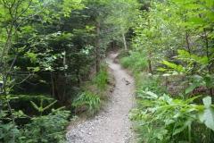 Trail-min